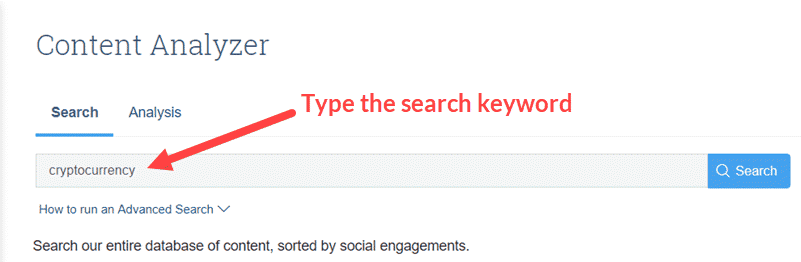 Type Search Keyword in BuzzSumo